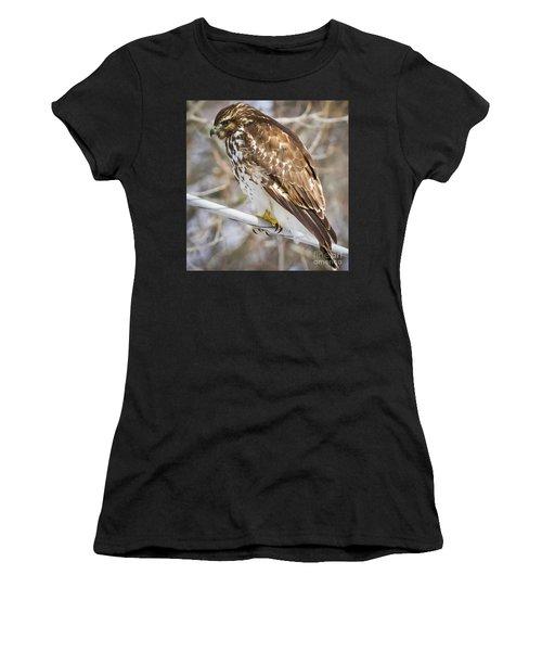 Juvenile Red-shouldered Hawk  Women's T-Shirt