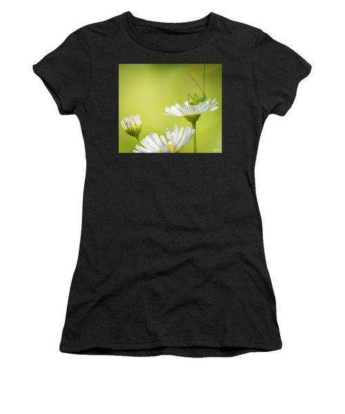 Katydid Women's T-Shirt