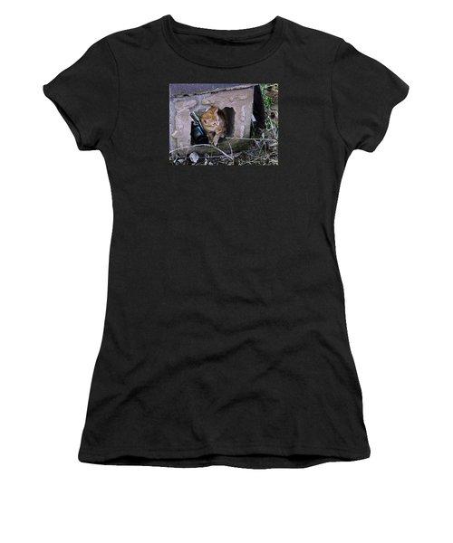 Kitten In The Junk Yard Women's T-Shirt (Junior Cut) by Larry Capra