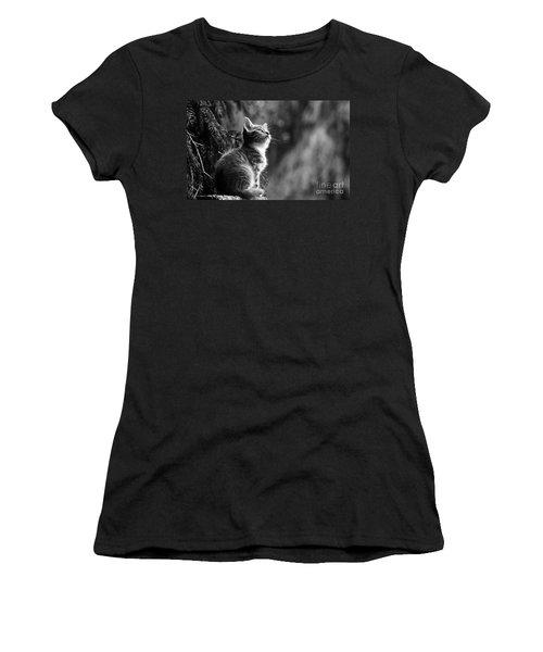 Kitten In The Tree Women's T-Shirt