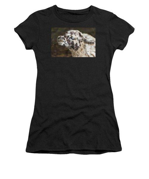 Lady Llama Women's T-Shirt