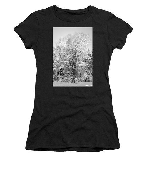Landscape Taos Nm J30e Women's T-Shirt