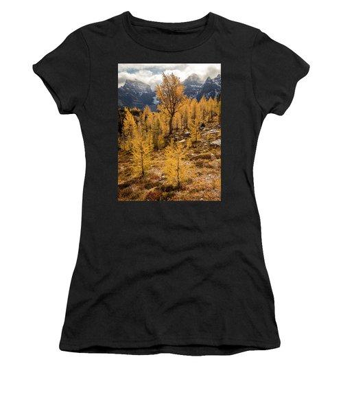 Larch Family Women's T-Shirt