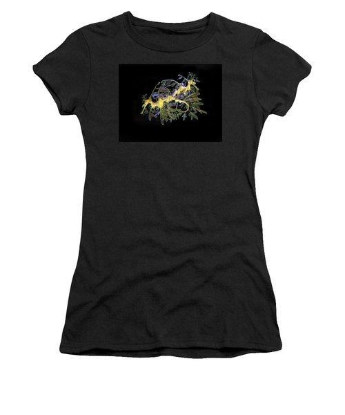 Leafy Sea Dragons Women's T-Shirt