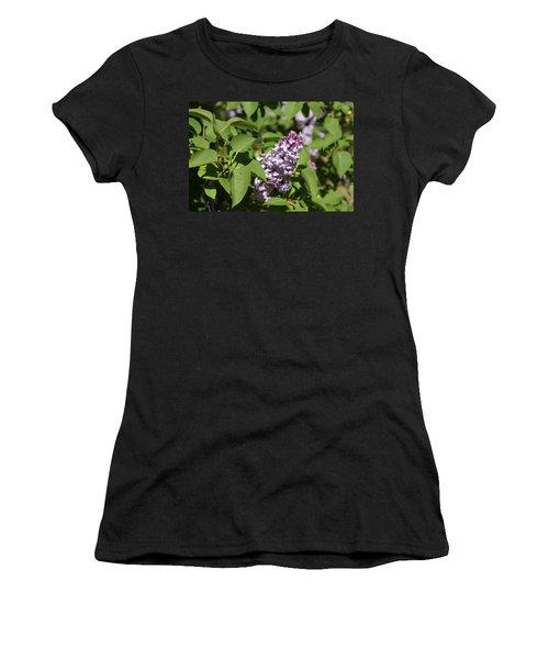 Lilacs 5551 Women's T-Shirt