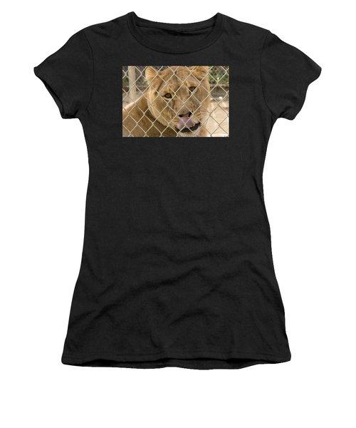 Lioness Licks Women's T-Shirt