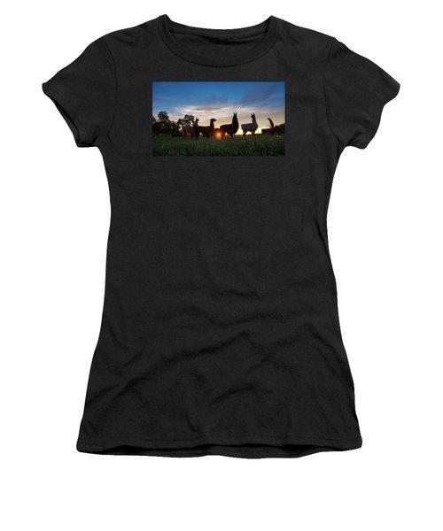 Llamas At Sunset Women's T-Shirt
