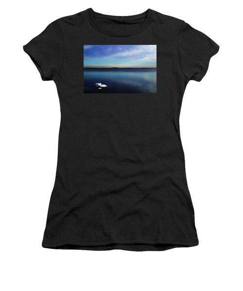 Lone Ice Women's T-Shirt (Junior Cut) by Anthony Jones