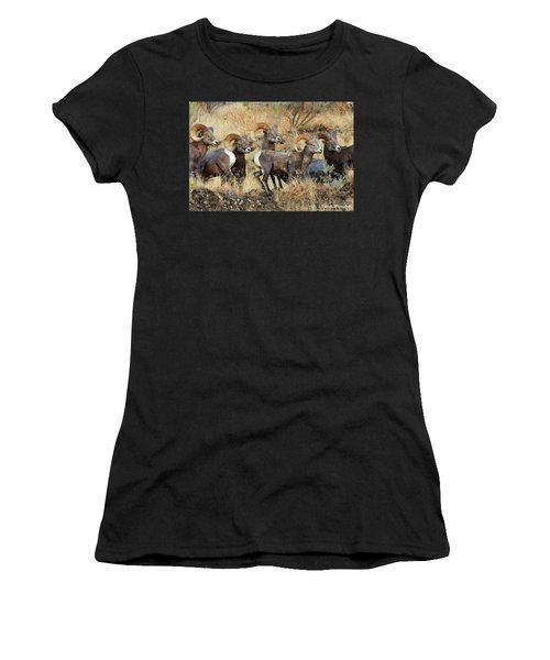 Look At That Women's T-Shirt (Athletic Fit)