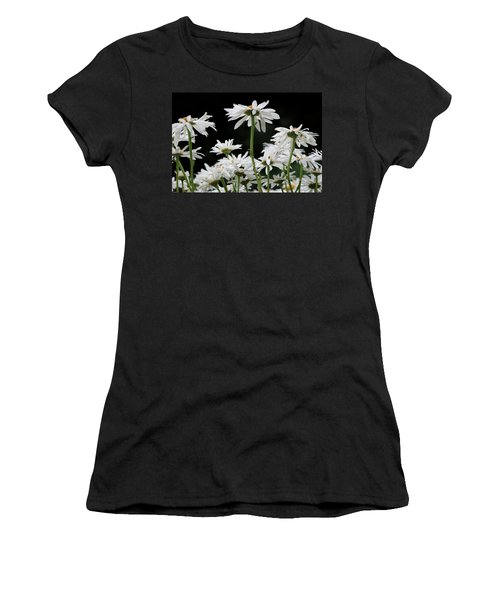 Looking Up At At Daisies Women's T-Shirt