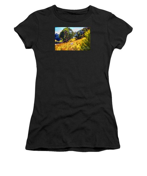 Lost Lamb Women's T-Shirt (Athletic Fit)