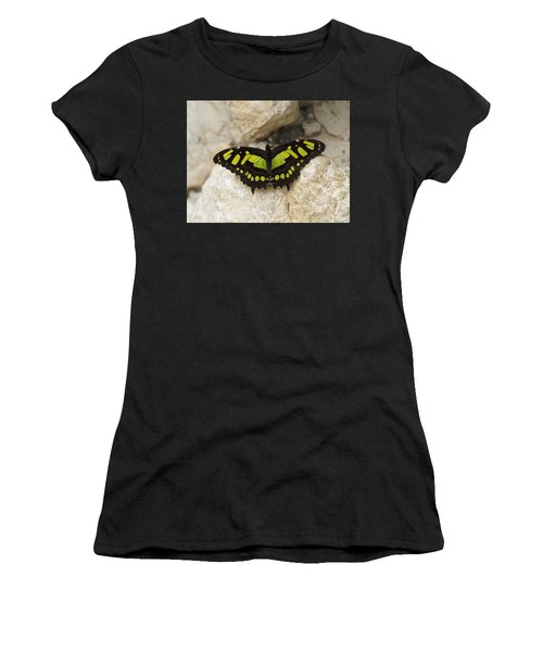 Women's T-Shirt featuring the photograph Malachite Butterfly - Siproeta Stelenes by Paul Gulliver