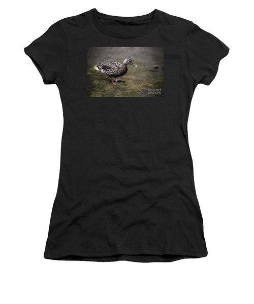 Malard,duckling Women's T-Shirt