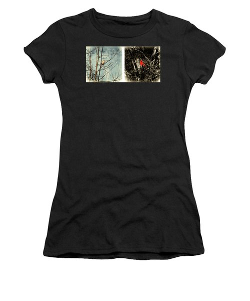 Male And Female Cardinal Women's T-Shirt
