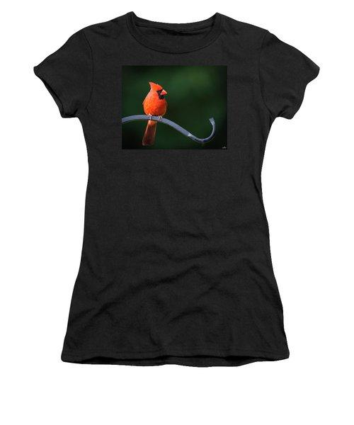 Male Cardinal At The Feeder Women's T-Shirt