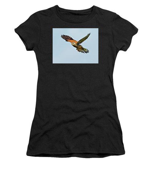 Male Kestrel In The Wind. Women's T-Shirt (Athletic Fit)