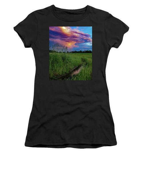 Meadow Lark Women's T-Shirt