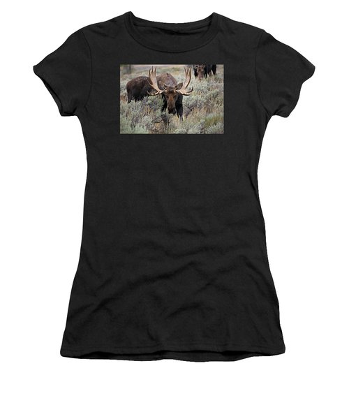 Moose In The Sage Women's T-Shirt