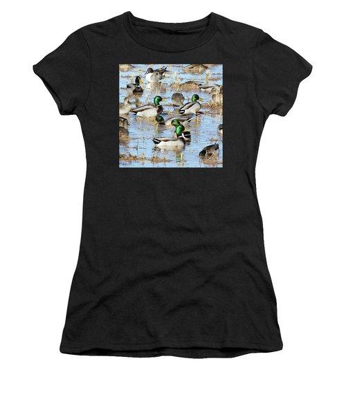 Mostly Mallards Women's T-Shirt