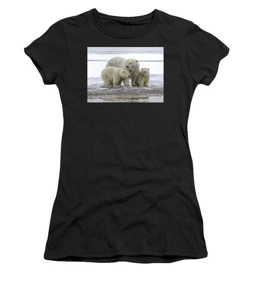 Mother And Cubs In The Arctic Women's T-Shirt