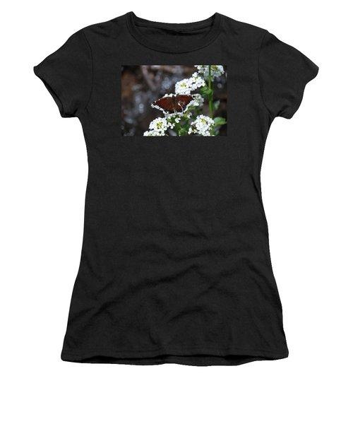 Mourning Cloak Women's T-Shirt