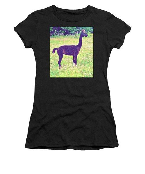 Mr Alpaca Women's T-Shirt