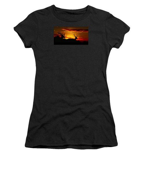 Elk Sunset Women's T-Shirt (Athletic Fit)