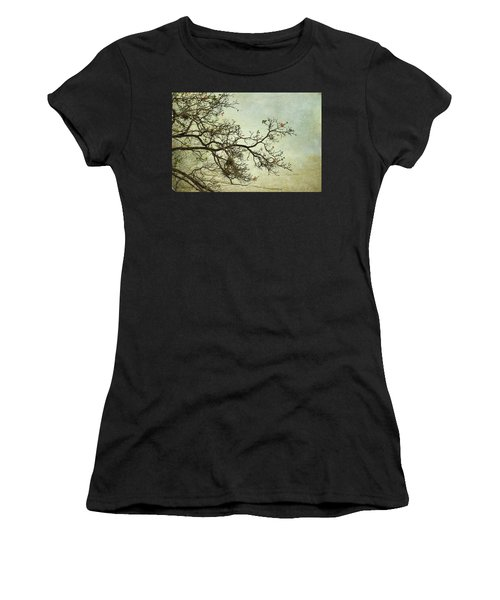 Nearly Bare Branches Women's T-Shirt
