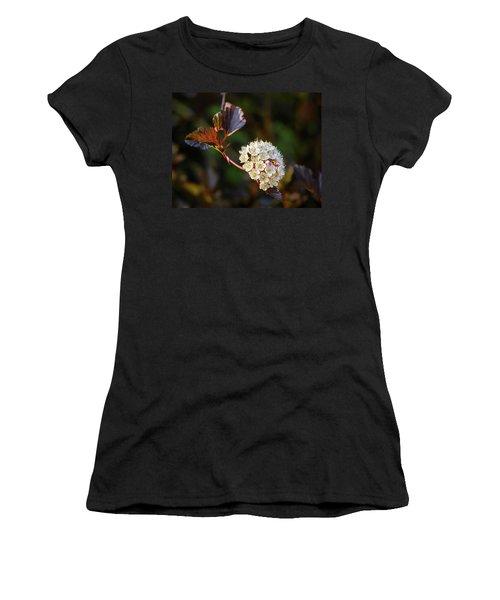 Ninebark Summer Wine Women's T-Shirt
