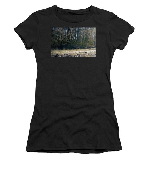 North Stilly Too Women's T-Shirt