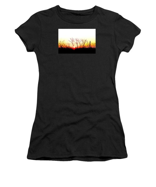 Old Fence Women's T-Shirt