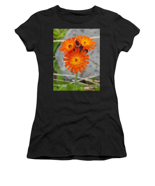 Orange Hawkweed Women's T-Shirt