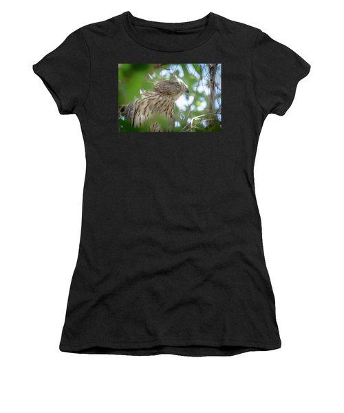 Red-shouldered Hawk Fledgling 1 Women's T-Shirt