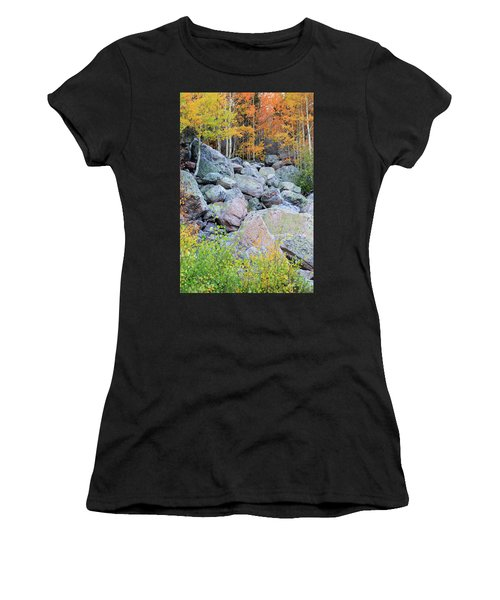 Painted Rocks Women's T-Shirt (Athletic Fit)