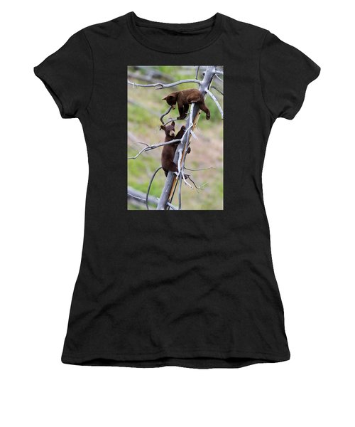 Pair Of Bear Cubs In A Tree Women's T-Shirt