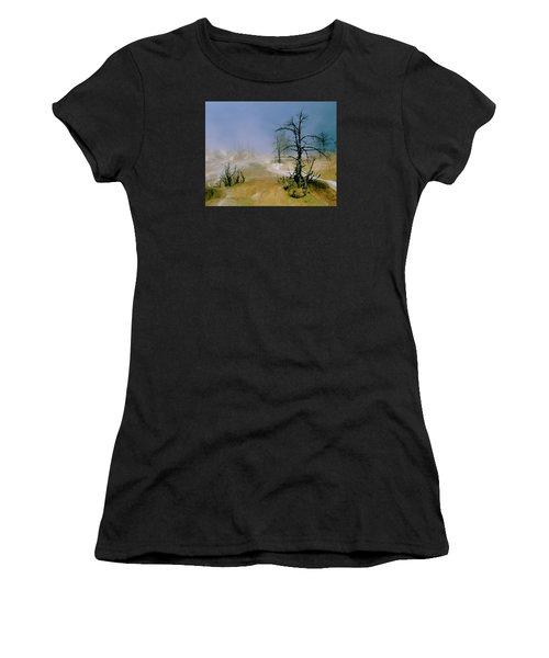 Palette Springs Women's T-Shirt (Athletic Fit)