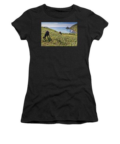 Pasture #2746 Women's T-Shirt