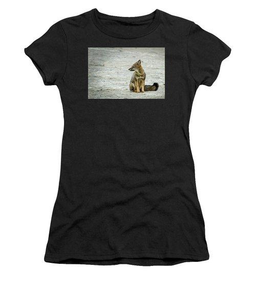 Patagonia Fox - Argentina Women's T-Shirt