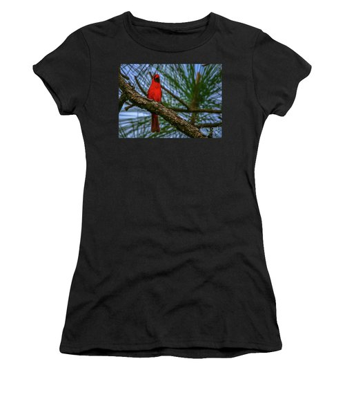 Women's T-Shirt featuring the photograph Perched Cardinal by Tom Claud