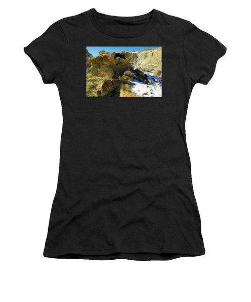 Petrified Log Bisti Badlands Women's T-Shirt
