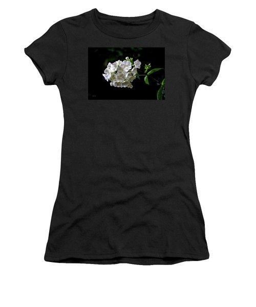 Phlox Flowers Women's T-Shirt