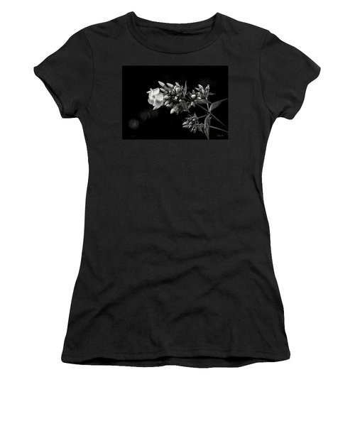 Phlox In Black And White Women's T-Shirt