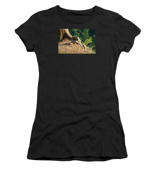 Picture Of A Tree On A Ledge Women's T-Shirt