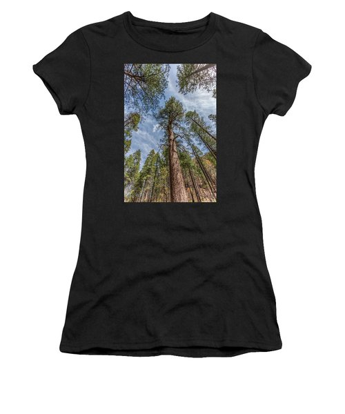 Pine Cathedral On The West Fork Women's T-Shirt