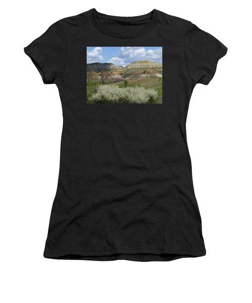 Plum Thicket Near The Burning Coal Vein Women's T-Shirt