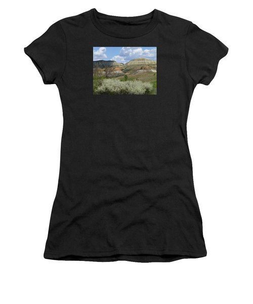 Plum Thicket Near The Burning Coal Vein Women's T-Shirt