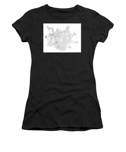 Polymer Crystallization With Modifiers Women's T-Shirt