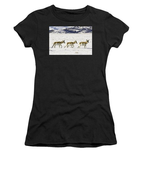 Pronghorns Women's T-Shirt
