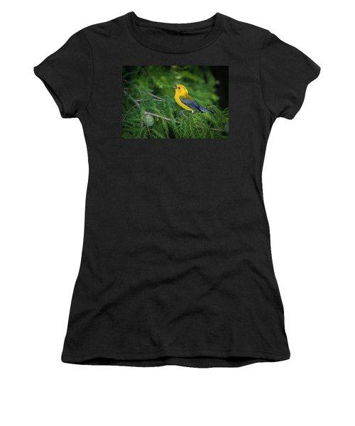 Prothonatory Warbler 9809 Women's T-Shirt (Athletic Fit)