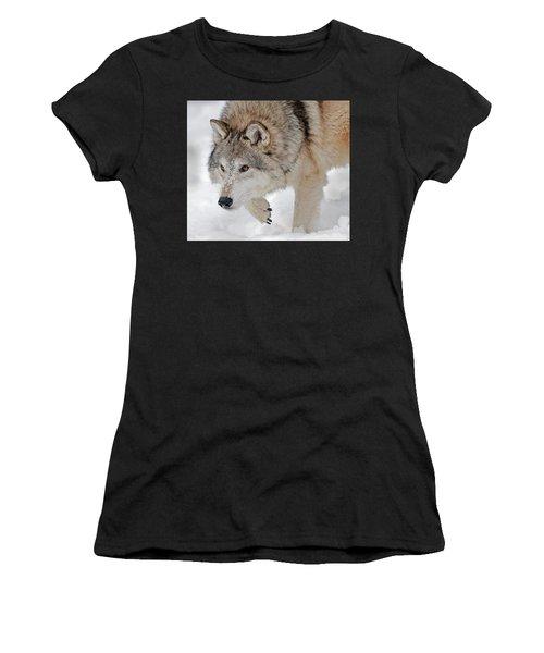 Prowling Wolf Women's T-Shirt